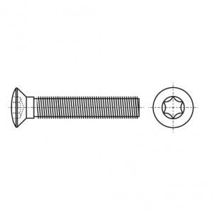 ISO 14584 A4 Винт с полупотайной головкой под torx