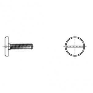 DIN 921 5,8 цинк Гвинт зі збільшеною циліндричною головкою і прямим шліцом