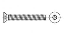 https://dinmark.com.ua/images/ART 9123 Винт антивандальный с потайной головкой