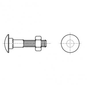 DIN 603 4,8 цинк Болт з напівкруглою головкою і квадратним підголовником