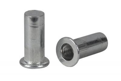 AN 324 цинк Клепальная гайка с буртиком рифленая герметичная