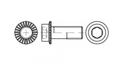 ART 88912 10,9 Болт с внутренним шестигранником и зубчатым фланцем