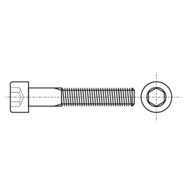 DIN 7984 8,8 цинк Болт з циліндричною головкою і внутрішнім шестигранником