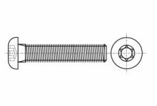 ISO 7380-1 10,9 цинк платковый Болт з напівкруглою головкою під torx - Інтернет-магазин Dinmark