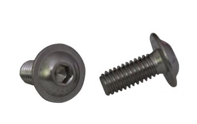 ISO 7380-2 A2 Болт с полукруглой головкой и внутренним шестигранником с фланцем