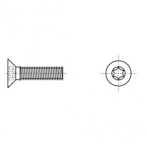 ISO 14581 4,8 цинк Гвинт з потайною головкою під torx