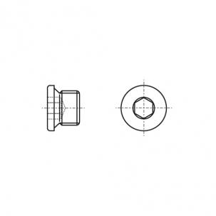 DIN 908 A4 Заглушка різьбова циліндрична з дрібним кроком