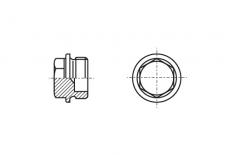 DIN 7604-C без покриття Заглушка різьбова з шестигранною головкою і фланцем