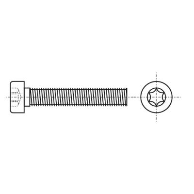 ISO 14580 8,8 цинк Болт з циліндричною зменшеною головкою під torx