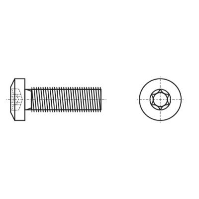 ISO 14583 8,8 цинк Винт с полукруглой головкой под torx