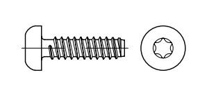 ISO 14585-F цинк Саморіз з напівкруглою головкою під torx