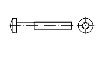 DIN 7985 A2 Винт с полукруглой головкой под torx