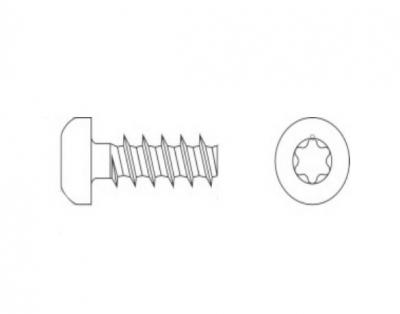 ART 7530 цинк Шуруп для термопластика с полукруглой головкой, шлиц TX