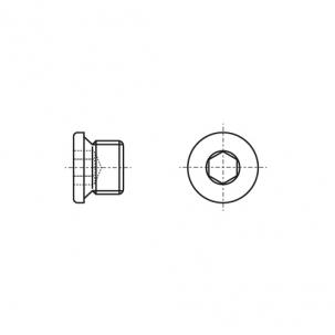 DIN 908 Заглушка різьбова циліндрична з дрібним кроком