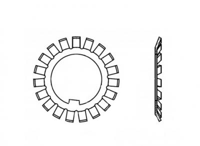 DIN 5406 цинк Шайба багатолапчаста - Dinmark