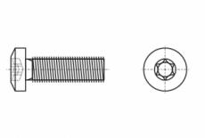ISO 14583 цинк Винт с полукруглой головкой под torx