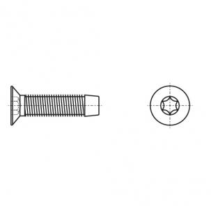 DIN 7500 M A2 Гвинт з потайною головкою самонарізаючий під torx