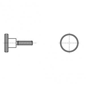 DIN 464 5,8 цинк Гвинт з накатаною головкою